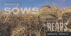 Wheat Fields Offering Envelopes - MA00886