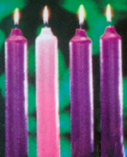 51% Beeswax Solid Advent Candles - 3 purple, 1 rose