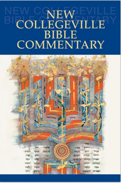 New Collegeville Bible Commentary - NN4659