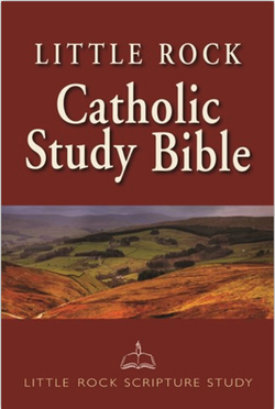 Little Rock Catholic Study Bible (Hardcover) - NN3648