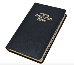 N.A.B. Deluxe Edition Bible - GFW2406