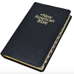 N.A.B. Deluxe Gift Edition Bible Indexed - GFW2406-I