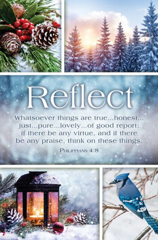 Reflect Bulletin Cover - AJU7689