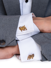 Bull(ish) today - Cufflink