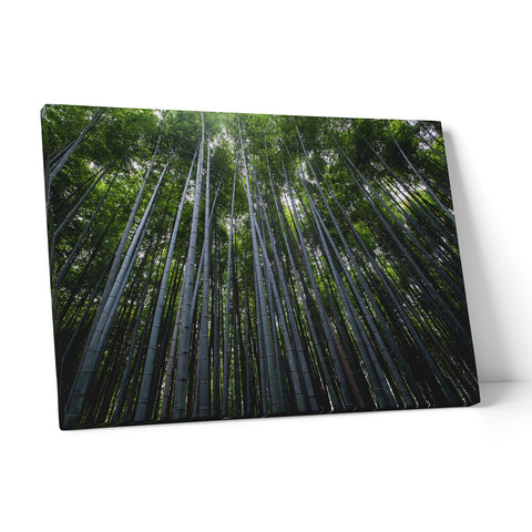 "Quadro in Tela Canvas ""Bamboo Trees"" - LaMAGLIERIA"