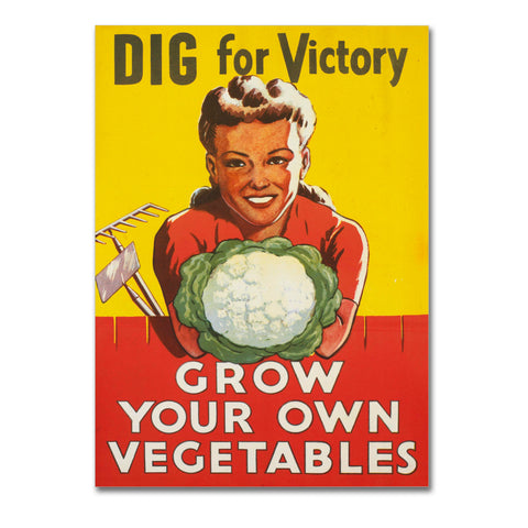 "Poster in Carta Fotografica ""Dig For Victory"" - LaMAGLIERIA"