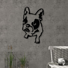 Dogo Metal Decorative Wall Accessories