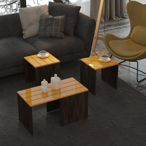 Ramanu Coffee Table