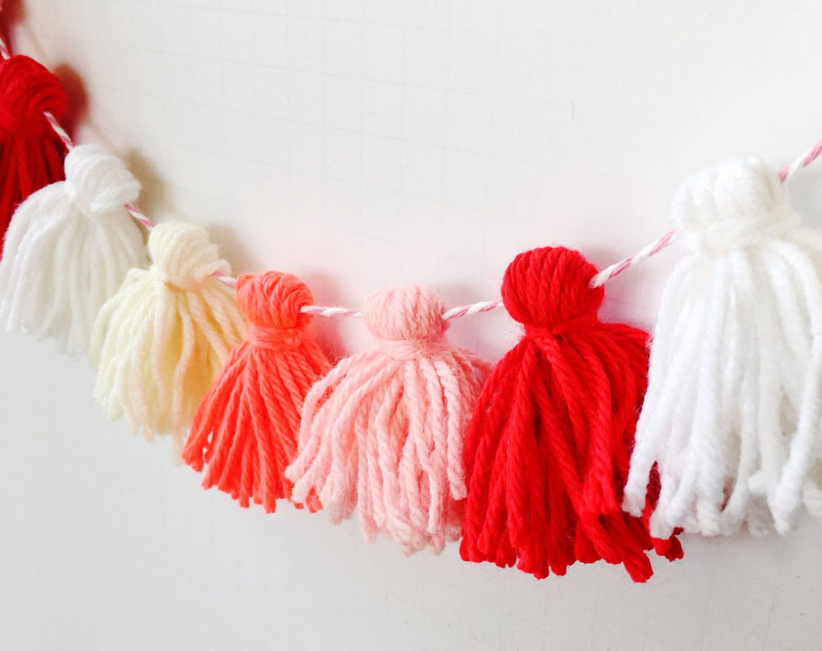 TICKLED PINK TASSEL GARLAND, Tassel Garland, BON + CO - Bon + Co. Party Studio