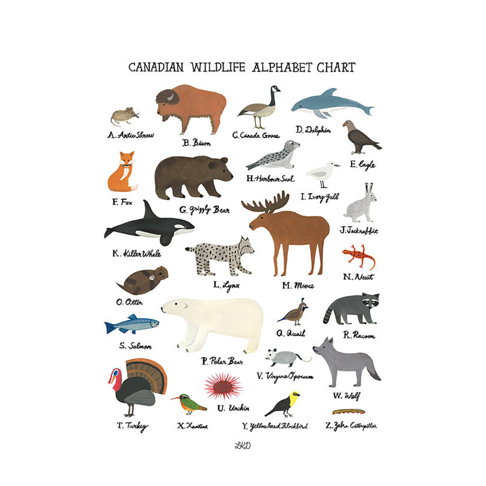Art Print - Canadian Wildlife Alphabet Chart