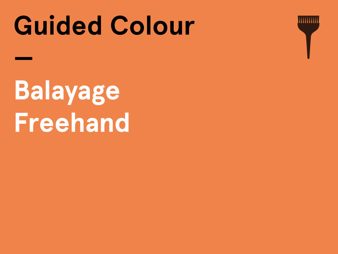Interactive Guided Colour – (Tuesday pm) – Balayage Freehand