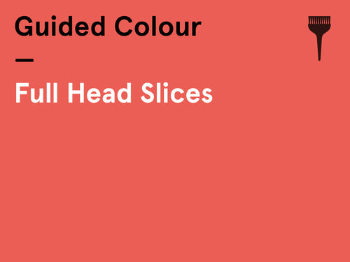 Interactive Guided Colour – (Monday am) Full Head of Slices