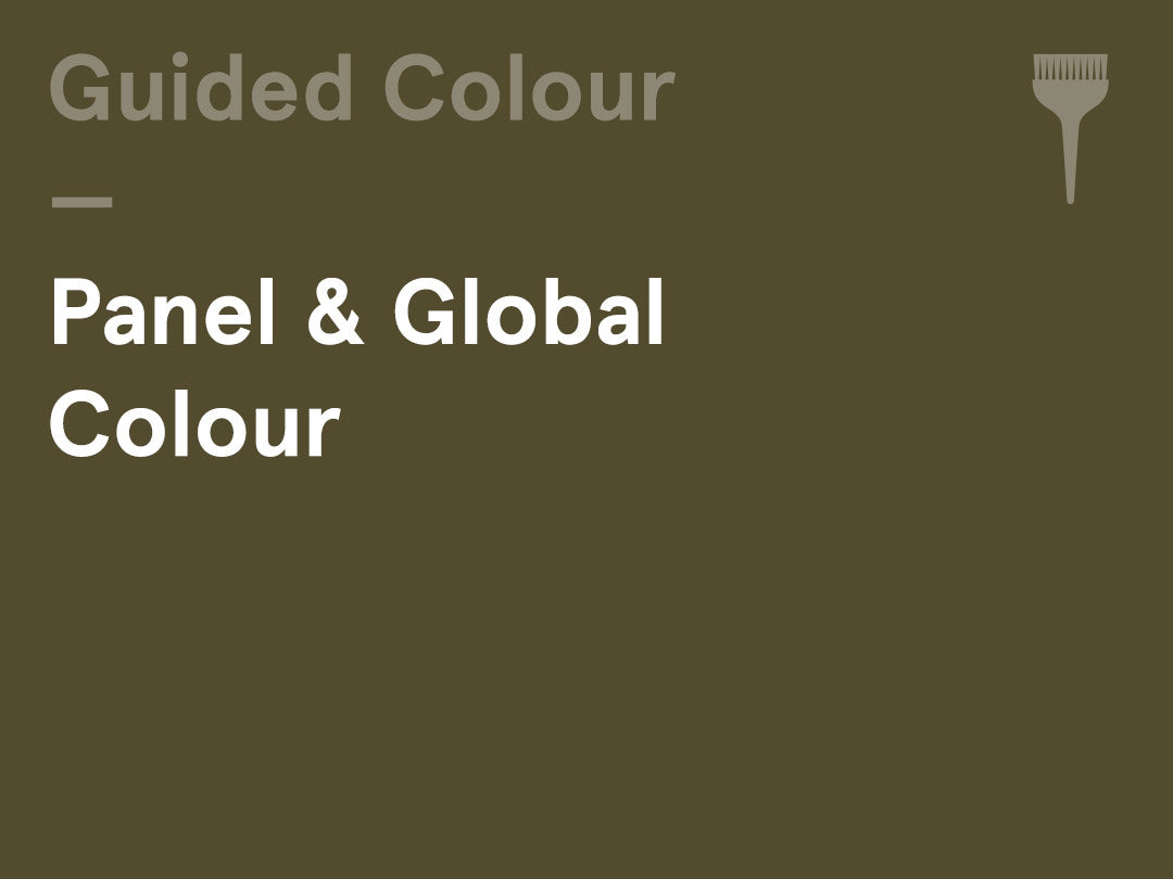 Interactive Guided Colour – (Wednesday am) – Panel & Global Colour
