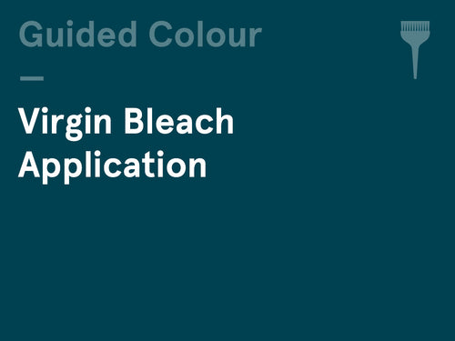 Interactive Guided Colour – (Wednesday pm) – Virgin Bleach Application