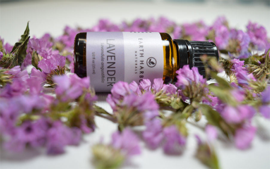 14 Ways Lavender Oil Supports Overall Health