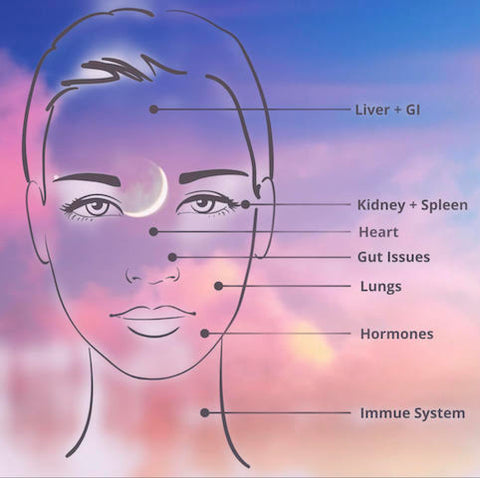 Face Mapping Diagram