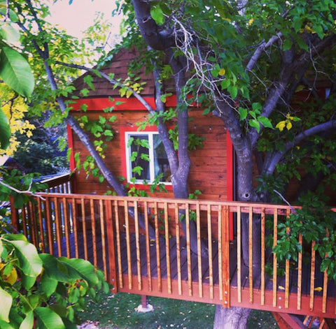 Off-the-grid treehouse exterior