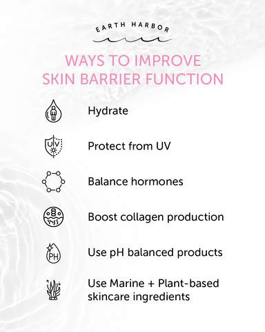 Earth Harbor Ways to Improve Skin Barrier Function
