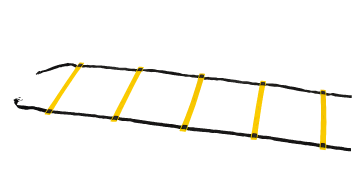 Yellow Agility Ladder
