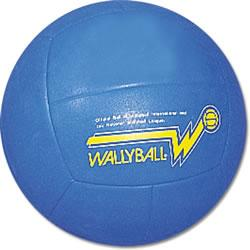 Official Wallyball Ball