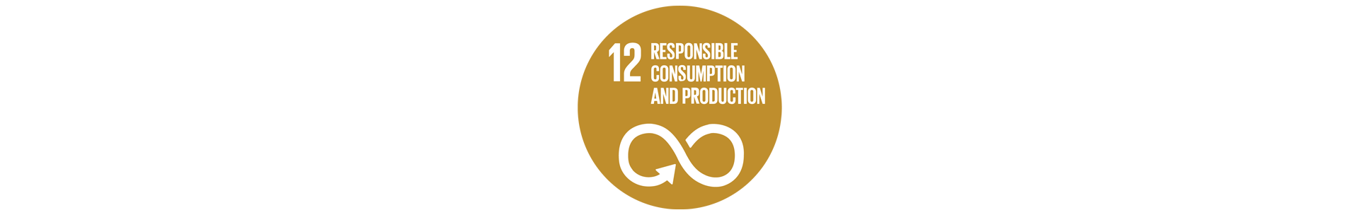 United Nation Goal 12: Responsible consumption and production