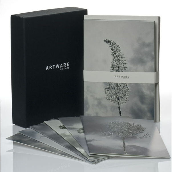 Scenapse note card set by Aziz+Cucher