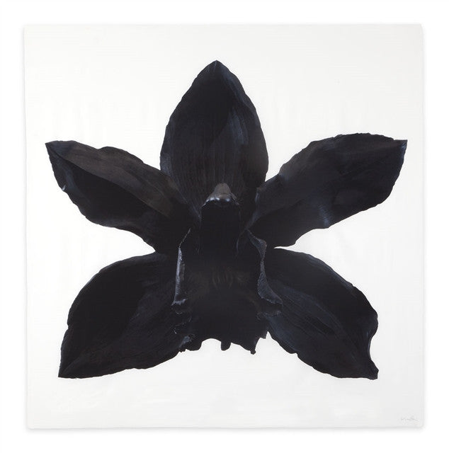 Stealth Desire Scarf by Marc Quinn