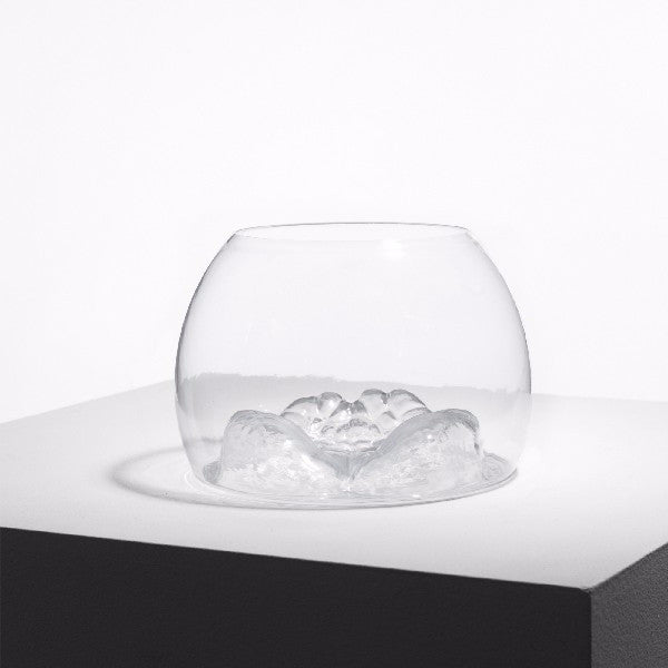 Untitled (Glass Bowl) by Do Ho Suh