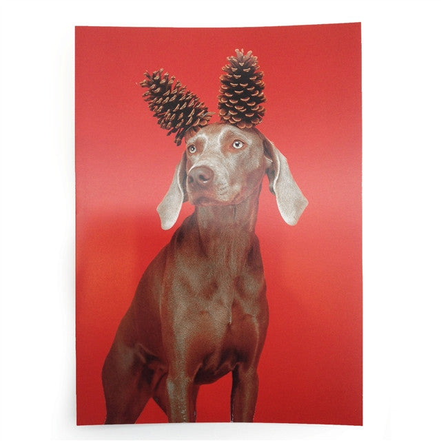 Cone Deer Cards by William Wegman