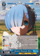 RZ/S46-E069 Modest Request, Rem