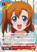 LL/W24-E054 Energetic by Nature, Honoka