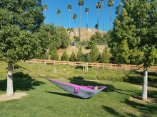 Aria 2 - Gray and Violet double hammock hung on trees at a local park. Blue skies, a hill and trees in the background