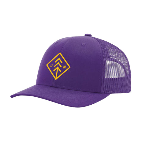 Purple and Gold Diamond Snapback