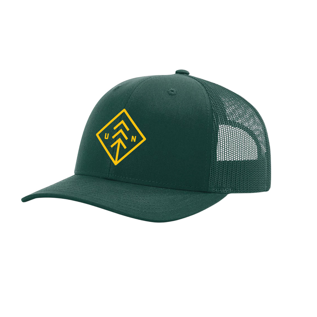 Green and Gold Diamond Snapback