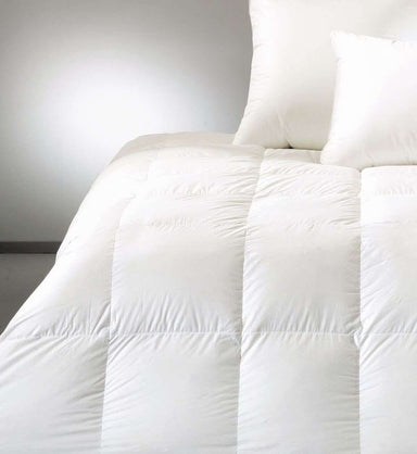 World's Finest Down Comforters by Seventh Heaven