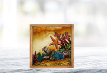 "(D) Set of 4 ""Seashore"" Coasters, Premium Quality Wooden Frame"