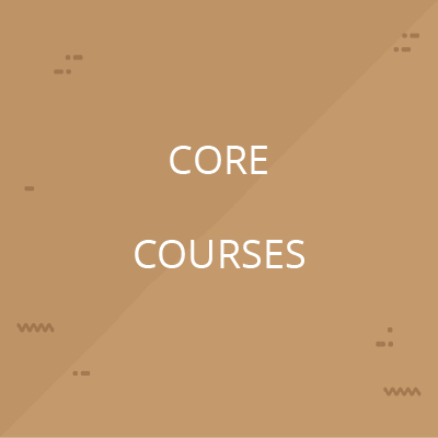 Core Shopper Marketing Course Bundle