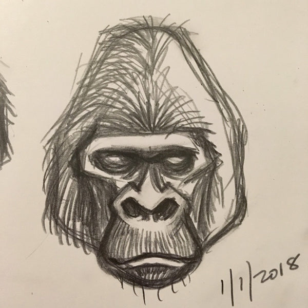 King Kong gorilla head sketch by George Coghill.