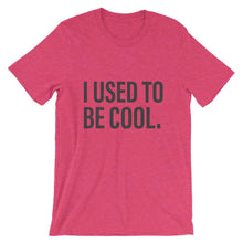 I Used To Be Cool Red Dad T-Shirt - House of Dad