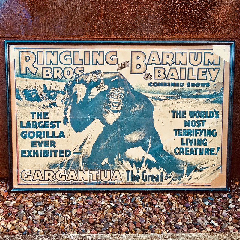 vintage circus poster @ A Life Designed