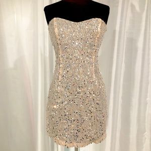 BOUTIQUE Short Blush & Silver Strapless Gown Size 7