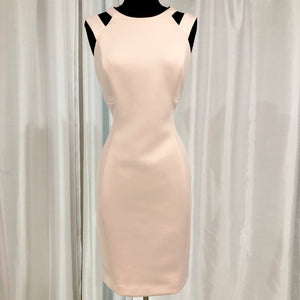 CALVIN KLEIN Short Blush Form Fitting Gown Size 8