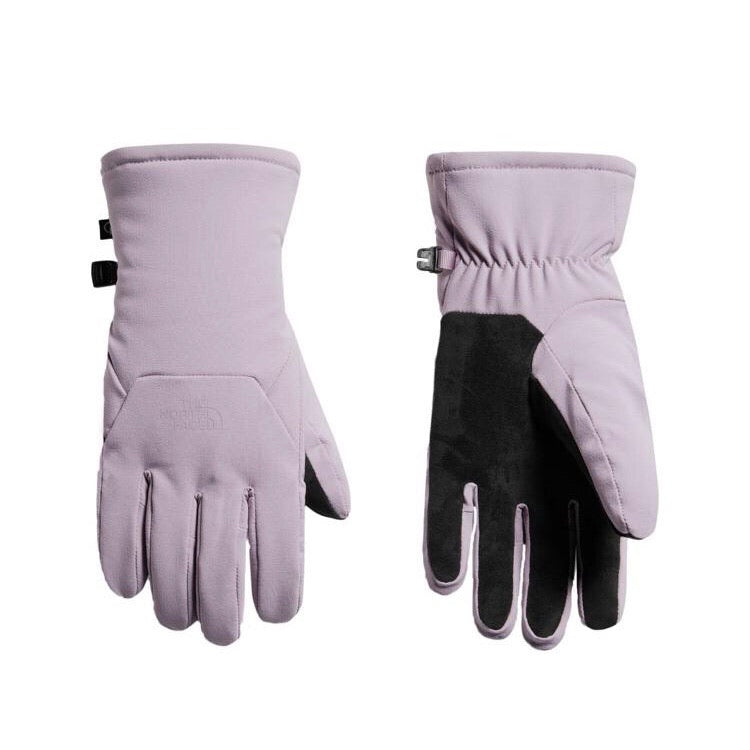THE NORTH FACE Women's Ashen Purple Shelbe Rachele Gloves Size L NWT