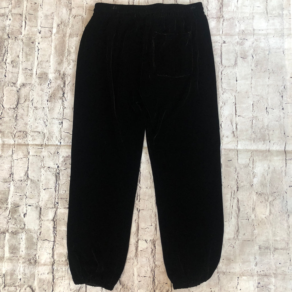 CURRENT/ELLIOTT VELVET PANTS NWT