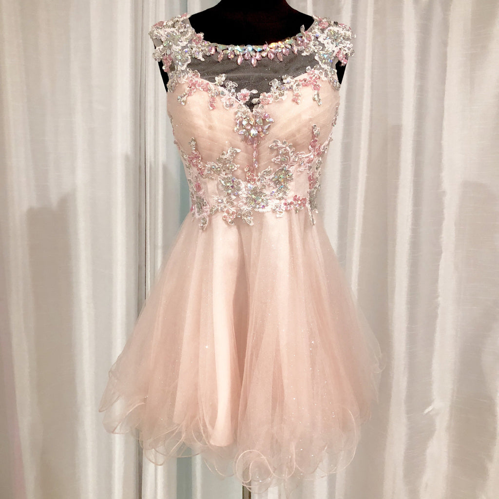 ALYCE PARIS Short Light Pink Tulle Gown Size 0