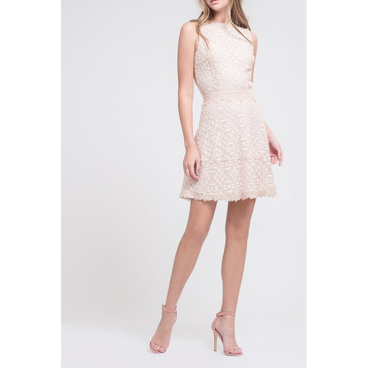 Fit & Flare Lace Dress with Mock Neck
