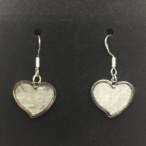 Meteorite Heart Pendant Earrings