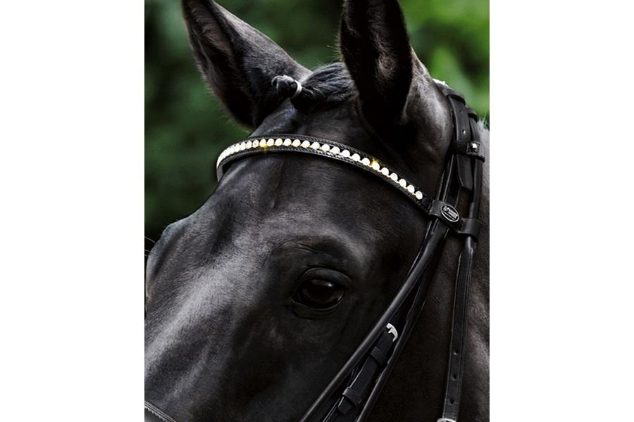 Passier Browband with Big Strass Crystals