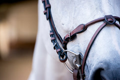 HvE bridle by PS of Sweden