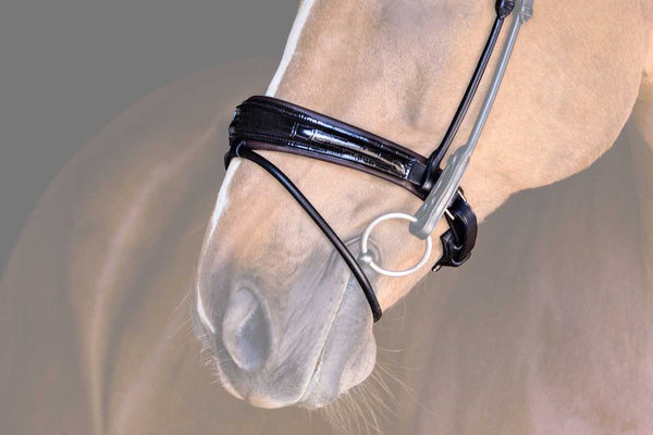 PS of Sweden All In Flash Noseband SALE ct